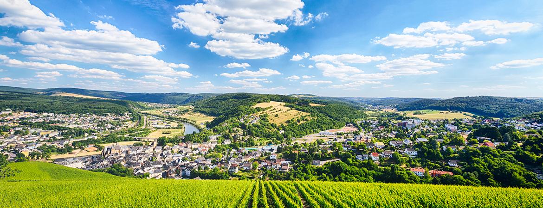 Blick auf Saarburg von den Weinbergen